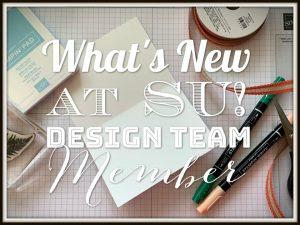 What's New At SU Design Team